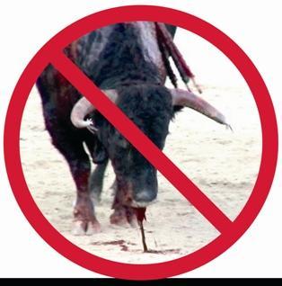 El Senado rechaza una moción del PP para proteger los toros