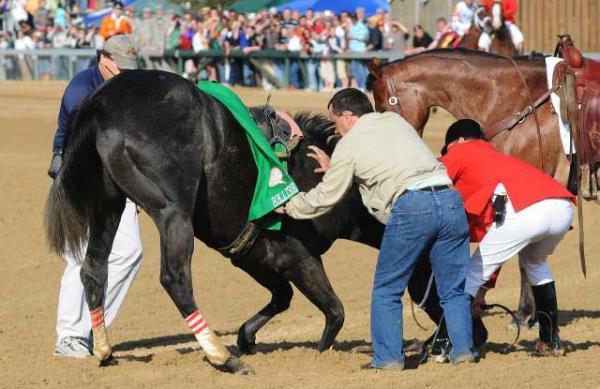 La realidad de la industria de las carreras de caballos