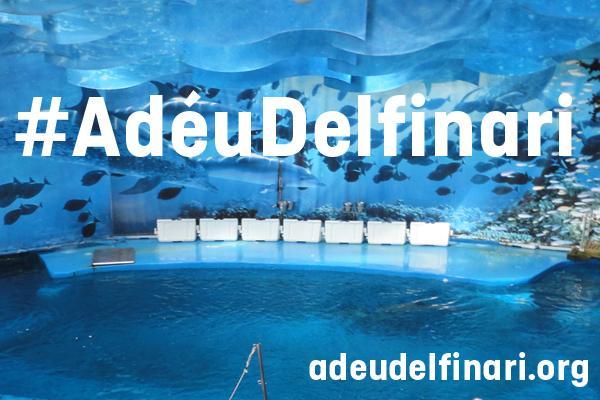 #AdéuDelfinari, necesitamos la complicidad de los ciudadanos para cerrar el delfinario de Barcelona