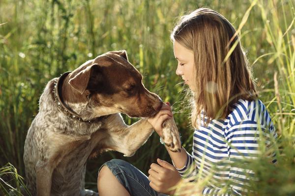 Los adolescentes reflexionan sobre protección animal