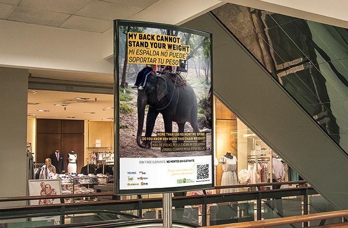 ¡Conseguido! Llevamos el turismo responsable al Aeropuerto de El Prat
