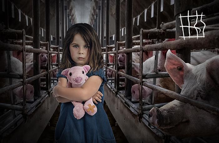 """#EndTheCageAge: Iniciativa Ciudadana Europea para acabar con las jaulas de animales """"de granja"""" en toda Europa"""