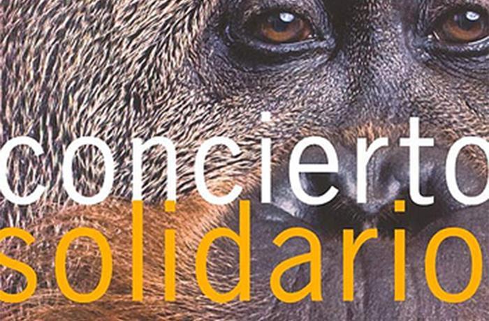 No te pierdas este Concierto Solidario irrepetible en favor de los animales