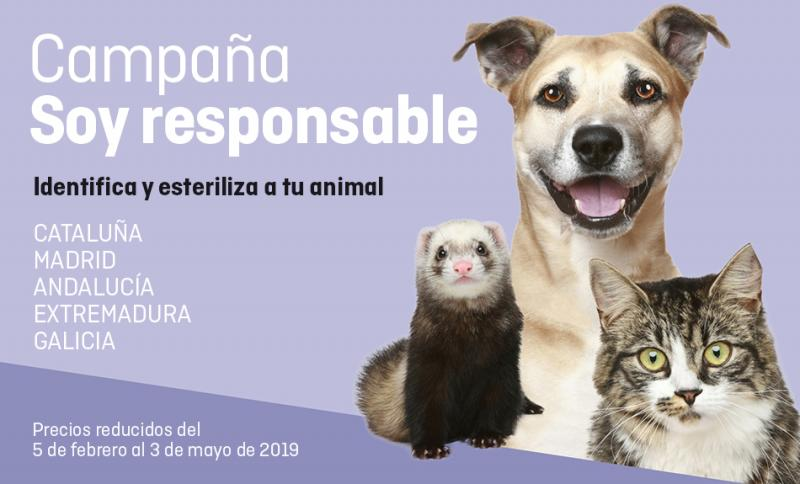 ¡Últimas 2 semanas para inscribir a tu animal a SoyResponsable!