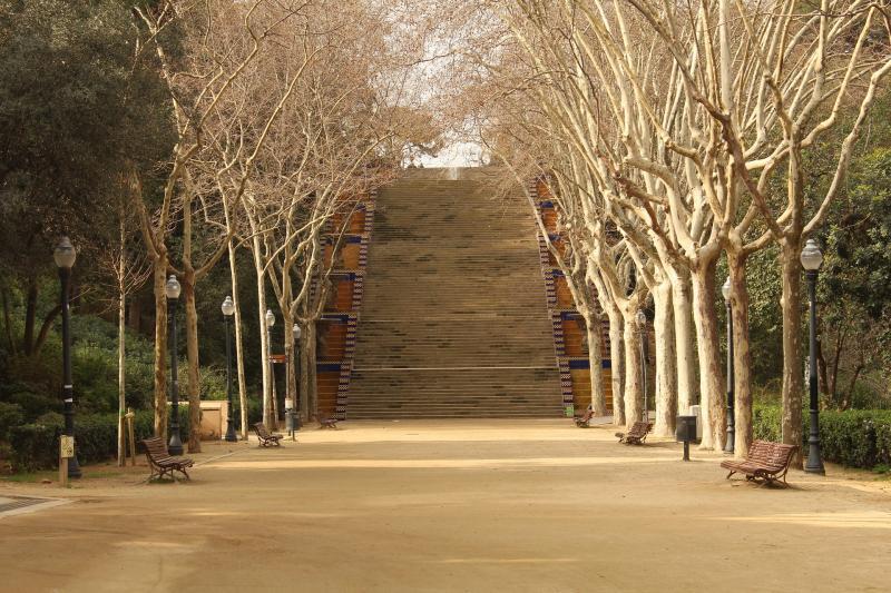 Comunicado de FAADA sobre la muerte de Kira a mano (una vez más) de la Guardia Urbana en Barcelona