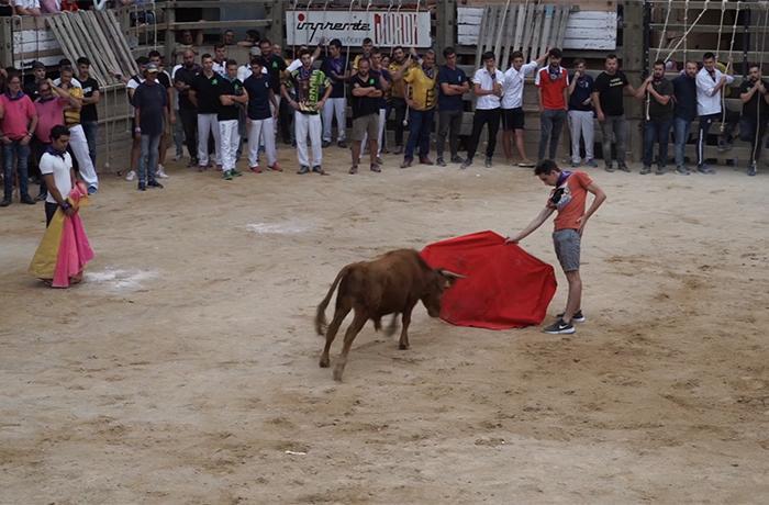 Exigimos al Parlament de Catalunya la abolición de los 'correbous'