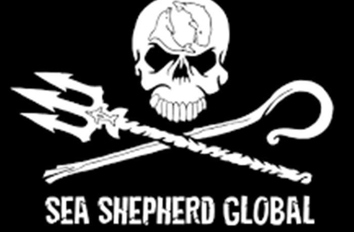 Canadá captura un barco de Sea Shepherd que protestaba contra la caza de focas
