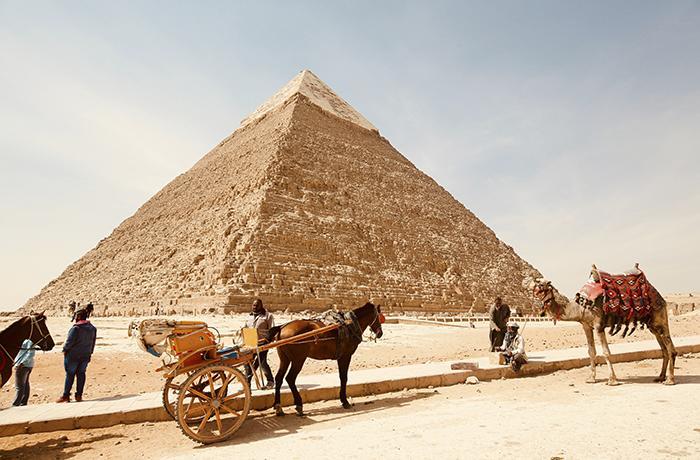 Egipto prohibirá los paseos en camellos y caballos en las pirámides