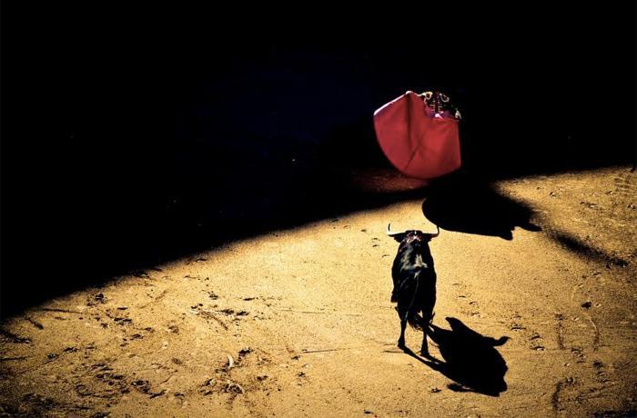 El Gobierno español incluye al sector taurino en un nuevo decreto de ayudas