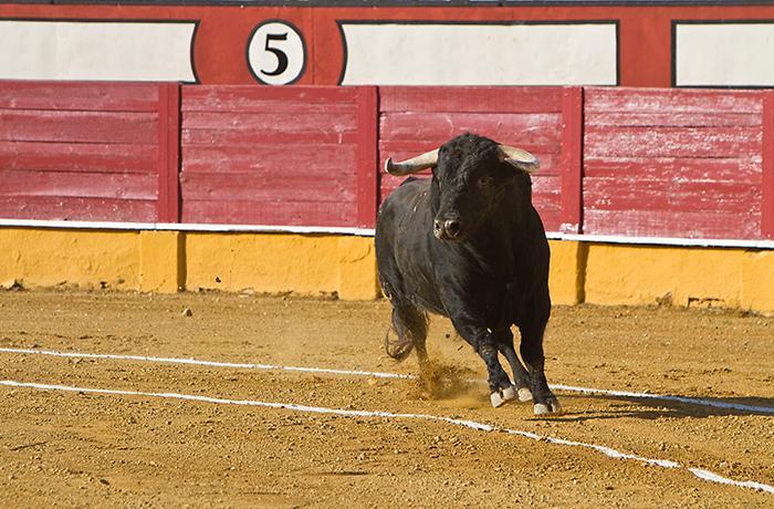 Miles de personas se manifiestan en Madrid por las corridas de toros