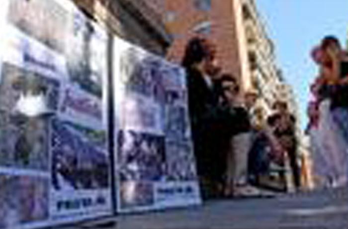 Condenados dos menores por matar y mutilar gatos de una protectora en Tarragona