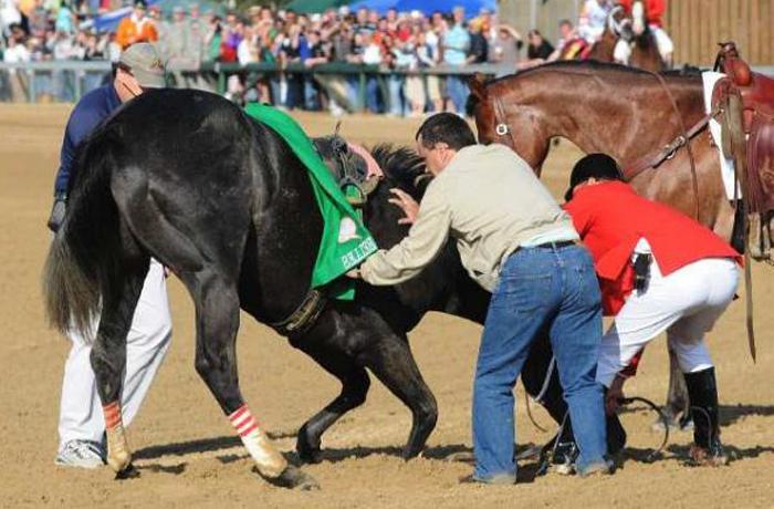 La realidad del negocio de las carreras de caballos
