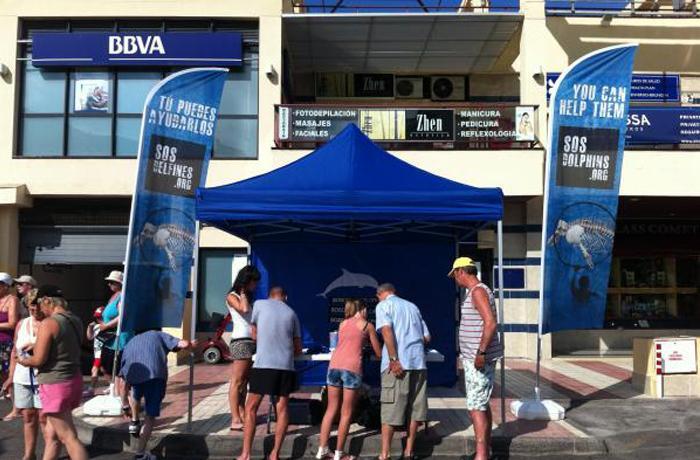 SOSdelfines visita Tenerife en su campaña de verano