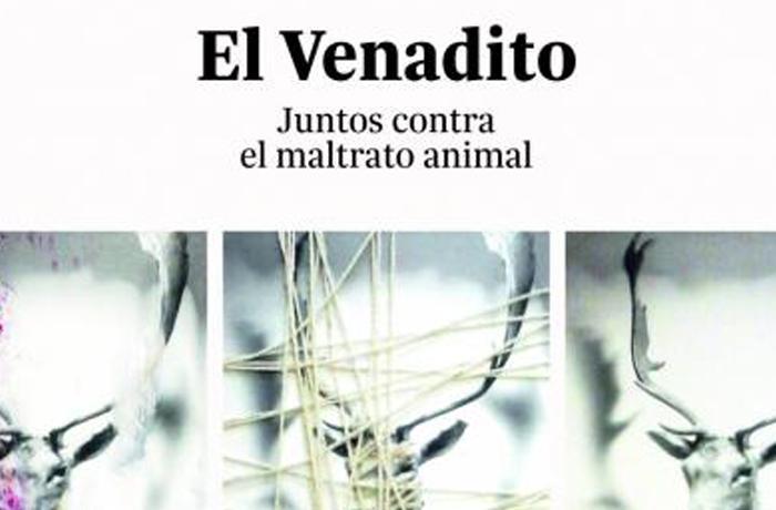 FAADA y el espacio artístico Sinestesia te invitan a crear arte contra el maltrato animal