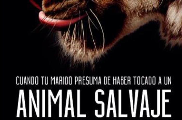 Nueva y divertida campaña para promover las lunas de miel respetuosas con los animales