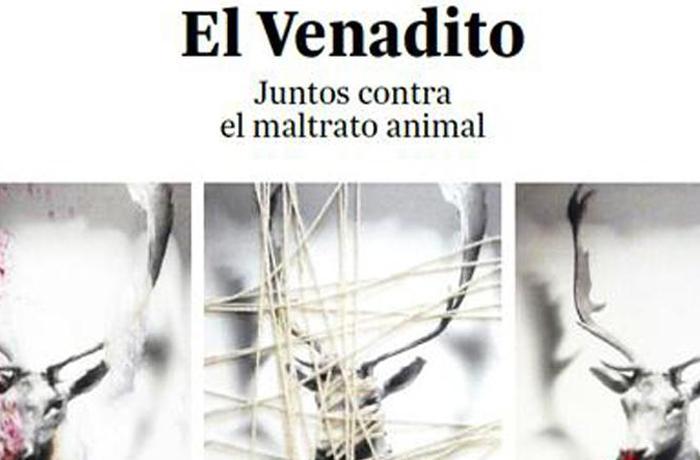 Inauguramos exposición: FAADA  y SiNesTesia reunen a 40 artistas contra el maltrato animal