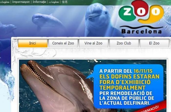 El Zoo de Barcelona seguirá exhibiendo a sus delfines, ahora más horas