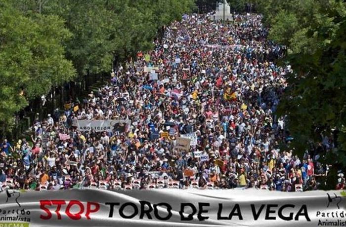 Se aprueba un decreto que puede terminar con el Toro de la Vega