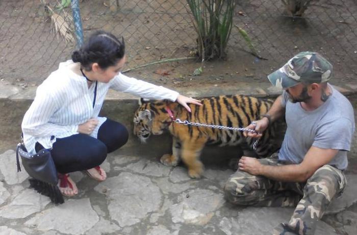 El Zoo de Castellar de la Frontera sigue sin cumplir la normativa