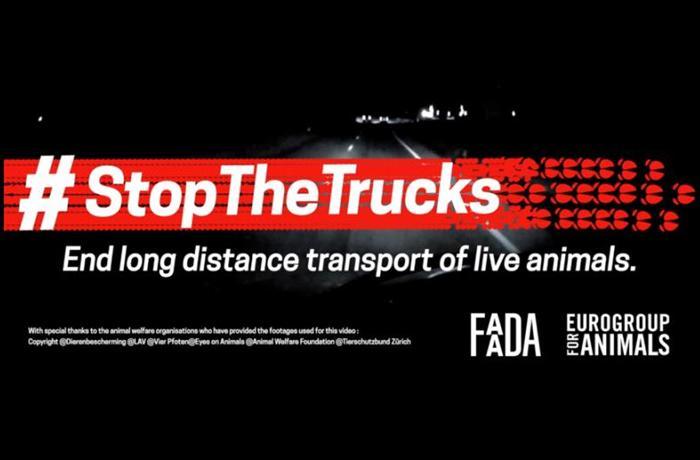 Firma para poner fin al transporte de animales a larga distancia