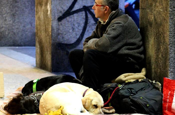 FAADA pone en marcha un proyecto para que se acepten animales en los albergues para personas sin hogar