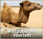 Responsible Tourism Responsable