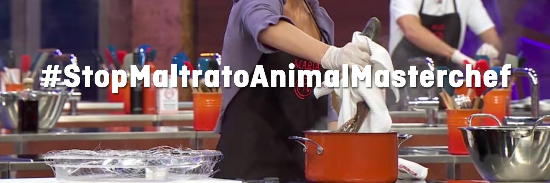 Masterchef: ¡la muerte de un animal no es ningún espectáculo!