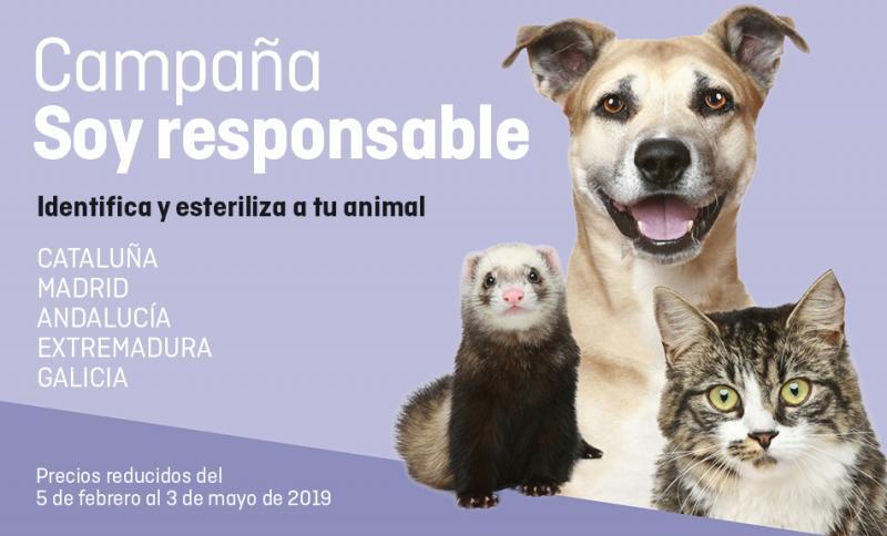 ¡Últimas 2 semanas para inscribir a tu animal en Soy Responsable!