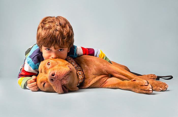 #NoSomosPeligrosos: ¡Firma para cambiar la Ley de Animales Potencialmente Peligrosos!