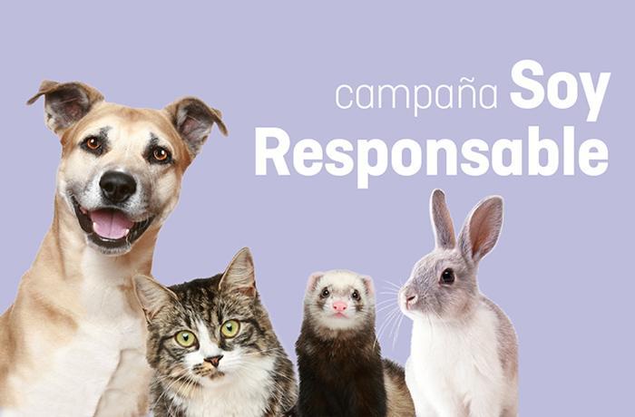 ¡Llevamos la campaña Soy Responsable a toda España!