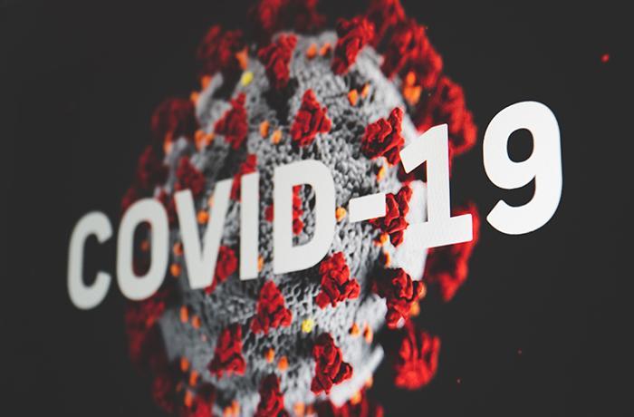 Activamos el mostrador de emergencia: animales y COVID-19
