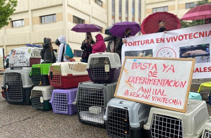 FAADA y AnimaNaturalis se unen para llevar Vivotecnia a los tribunales
