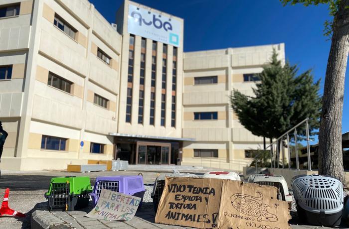 Junto a otras ONGs acusamos a la Comunidad de Madrid de ocultar información sobre los animales en Vivotecnia