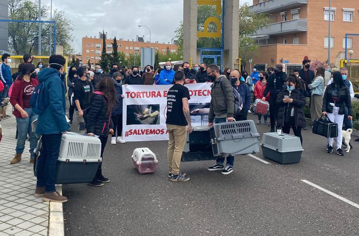 Concentración en Barcelona para pedir el rescate de los animales de Vivotecnia