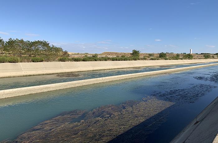 Alarma por la presencia de superbacterias en los ríos Cinca y Gállego