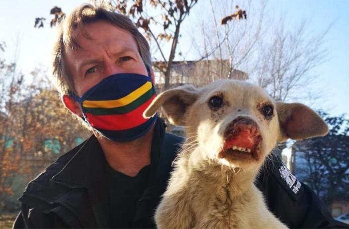 Los animales del refugio Nowzard Dogs tienen la posibilidad de ser rescatados