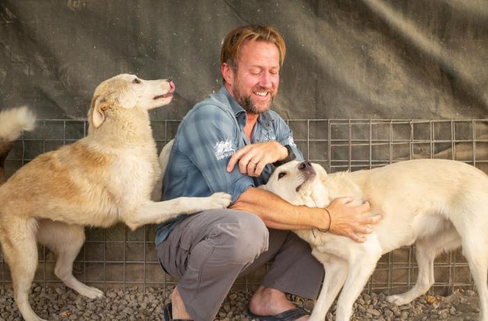 Pen Farthing consigue salir de Afganistán con casi 200 perros y gatos