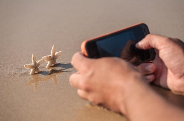 En Colombia, habrá multas y sanciones para los turistas que saquen a las estrellas marinas del agua