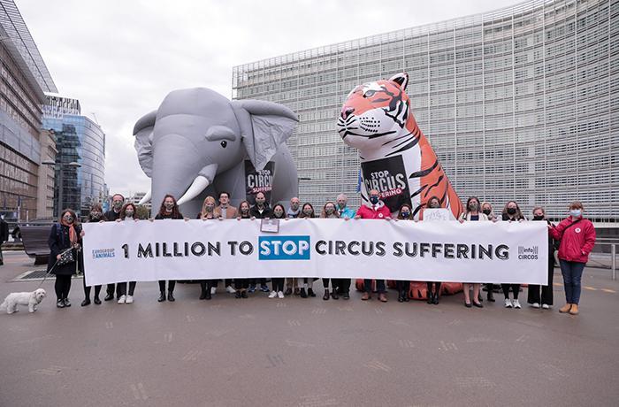 Un millón de ciudadanos piden a la Comisión Europea que prohíba el uso de animales salvajes en los circos