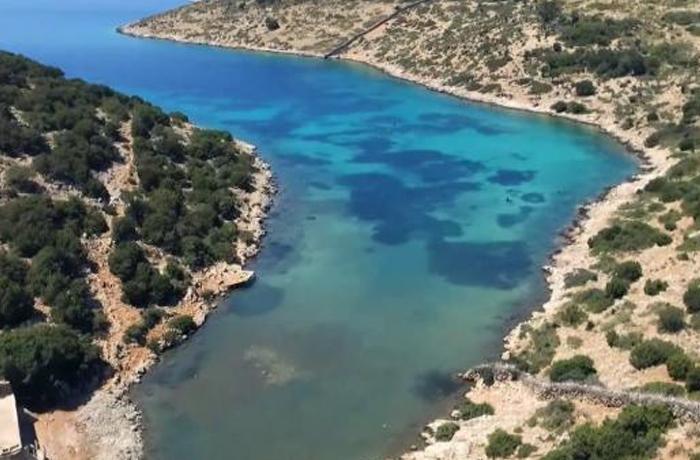 Viajamos a Grecia para evaluar el primer santuario de delfines de Europa
