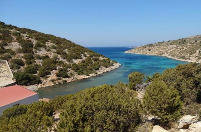 Un santuario en Grecia como opción para los delfines de Barcelona