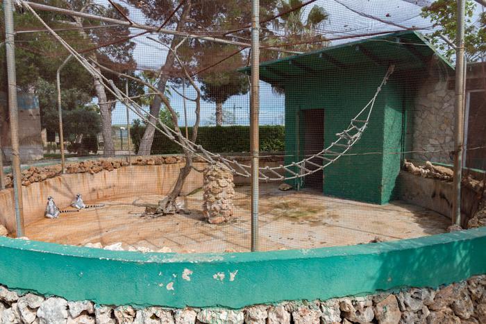 Los zoos en Mallorca no superan el examen de calidad realizado por InfoZOOS